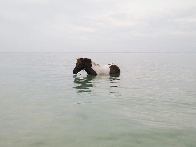 Lombok + Gili Air