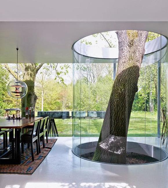 casa original naturaleza